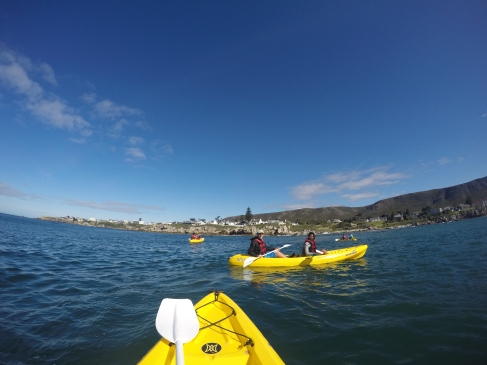kayak hermanus