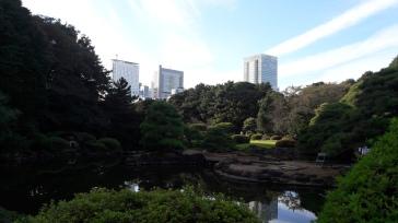 Jardin japones con la ciudad en el fondo