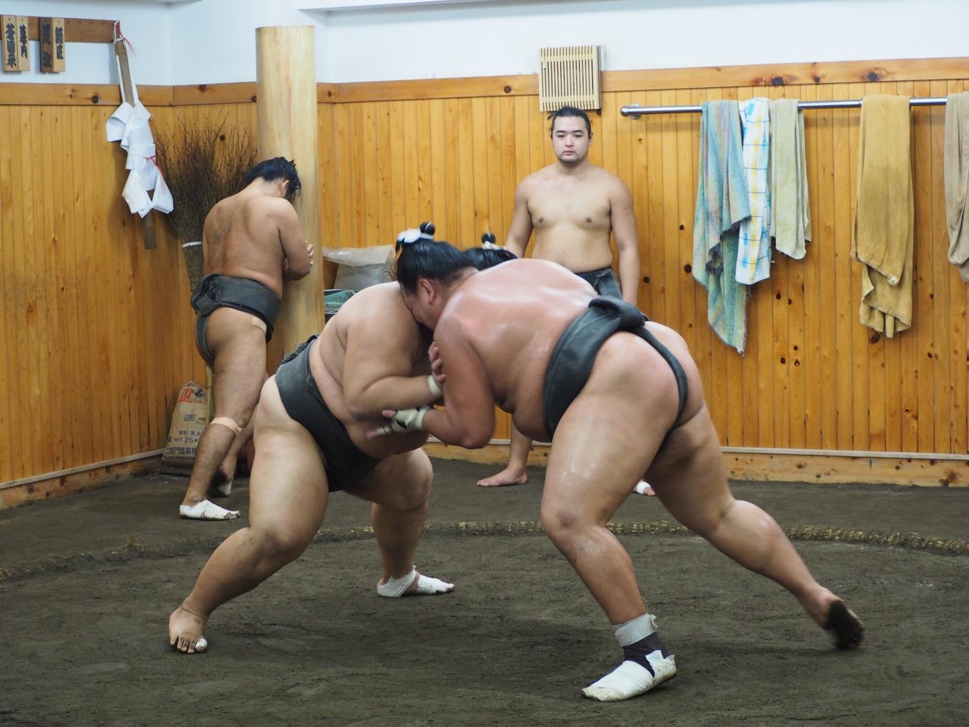 entrenamiento-sumo